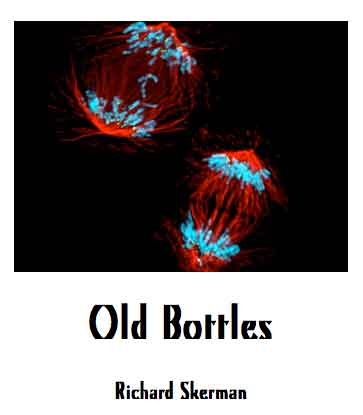 oldbottles